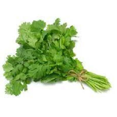 Picture of BUNCHES - Coriander