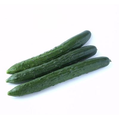 Picture of Cucumber - Continental Each