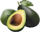 Picture of AVOCADO - Shepard XL