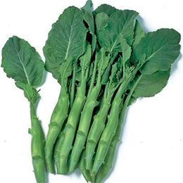Picture of Chinese Broccoli Per 300g