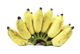 Picture of Bananas - Ducasse