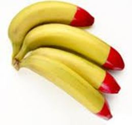 Picture of Bananas - Organic