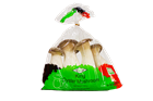 Picture of Korean Mushroom - King Oyster Prepack