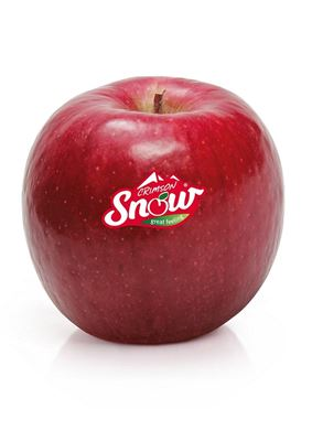 Picture of Apple - Crimson Snow Large