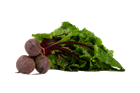 Picture of Beetroot - Bunch 3PCS