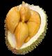 Picture of Durian - D13 Golden Bun