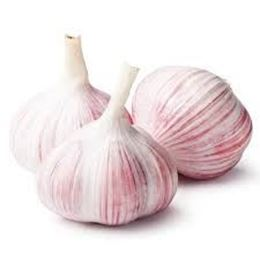 Picture of Garlic - Purple Each