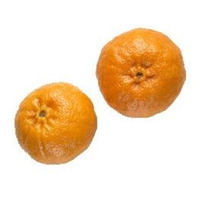 Picture of Mandarin - Hickson