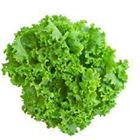 Picture of Lettuce - Green Coral
