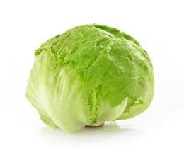 Picture of Lettuce - Iceberg