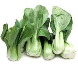 Picture of Bokchoy Baby