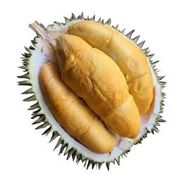 Picture of New Season Durian - D101 Red Flesh (1.5kg-2.5kg)