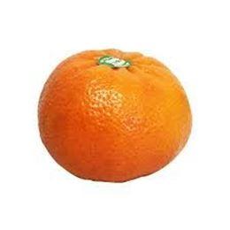 Picture of Mandarins - Afourer Each
