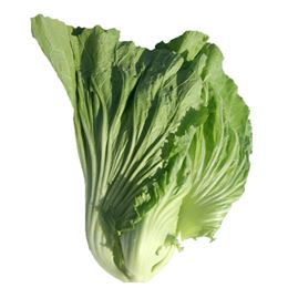 Picture of Cabbage - Heart Mustard