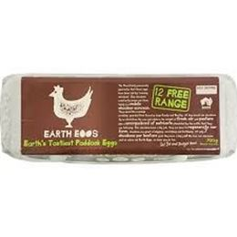 Picture of EGGS - 700g Free Range Earth