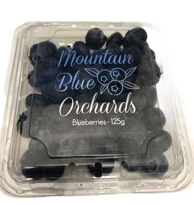 Picture of Blueberry - Premium