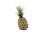 Picture of Pineapple - Roughy