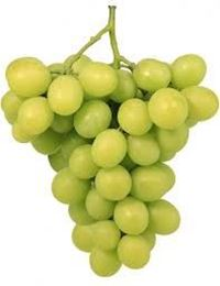 Picture of Grapes - Menindee Seedless Per 500G