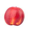 Picture of Nectarine - Yellow XL