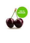 Picture of Cherries - 2Kg Premium XL