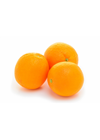 Picture of Orange - Navel -