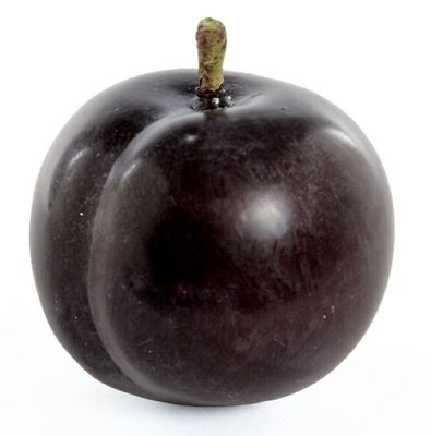Picture of Plum - Angelino